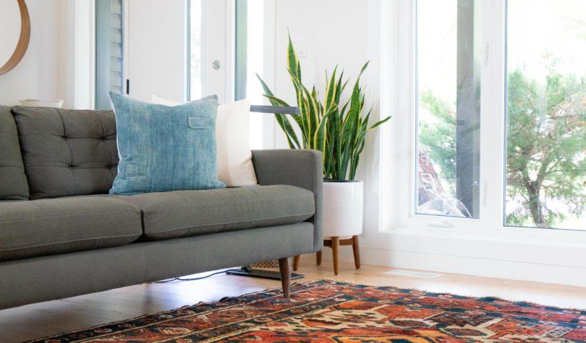 living room with sofa and rug